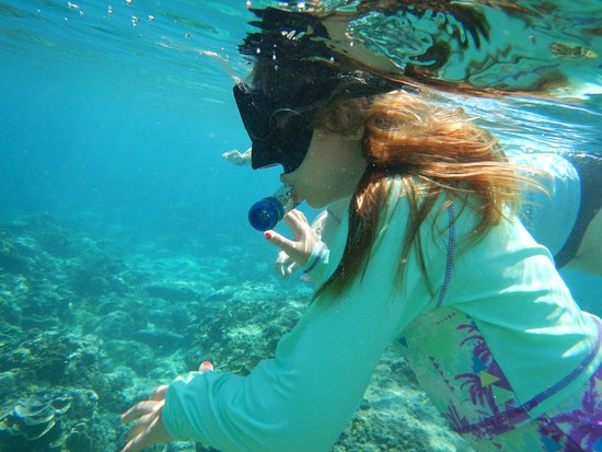 Alam Gili: snorkeling from beach in front of the hotel