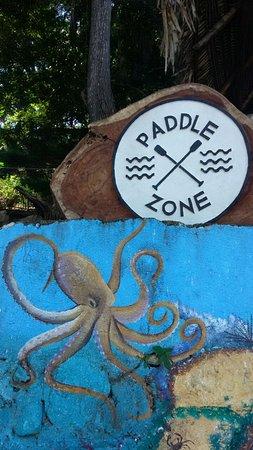 Paddle Zone
