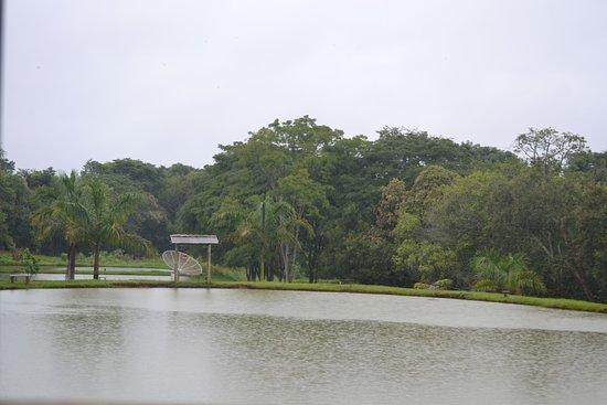 Lagoa Dourada, MG: Lagoa para pesca
