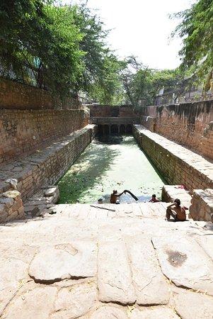 Mehrauli Archaeological Park: Gandhak ki Baoli