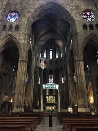 Girona Cathedral (Catedral): Amazing size inside
