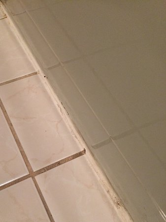 Plainview, TX: Dirty grout and general accumulated dirt in bathroom
