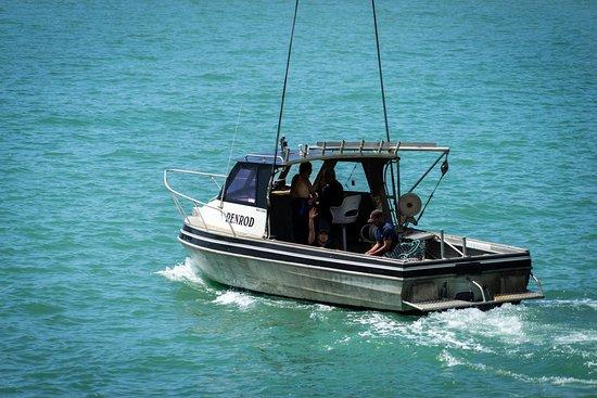 Opotiki, Selandia Baru: Penrod Fishing Charters leaving Maraehako Bay Retreat