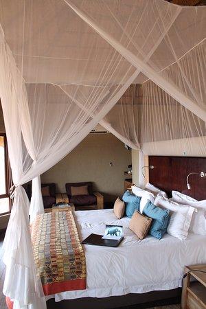 Ngoma Safari Lodge: Room
