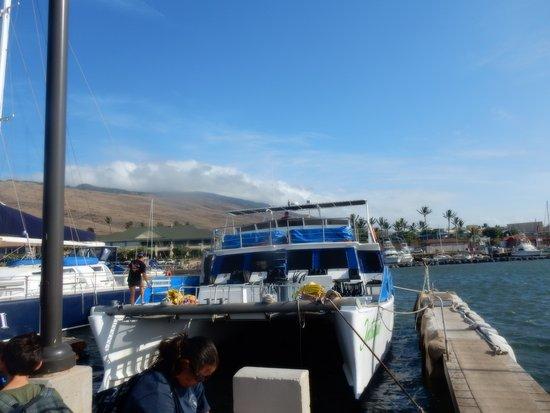 Maalaea, Hawaï: Pacific Whale Foundation boat.