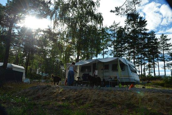 Evje og Hornnes Municipality Photo