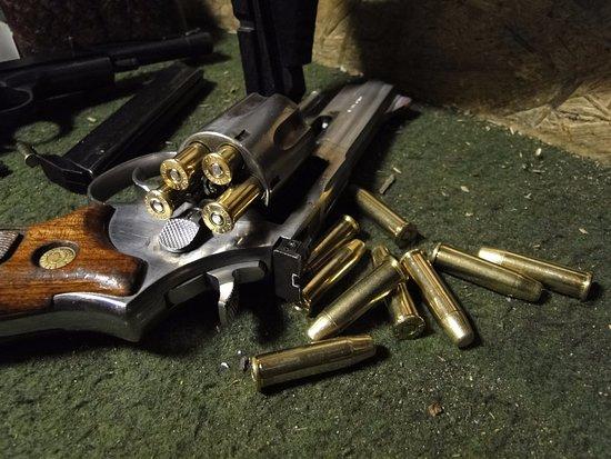 Taurus  357 Magnum revolver - Picture of Erva Shooting Range