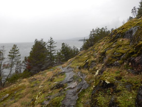 Madeira Park, Canadá: Francis Point Park Path