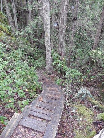 Madeira Park, Canadá: Francis Point Park Trail