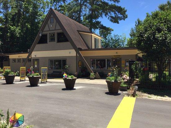 Charleston Koa Campground Reviews Ladson Sc Tripadvisor