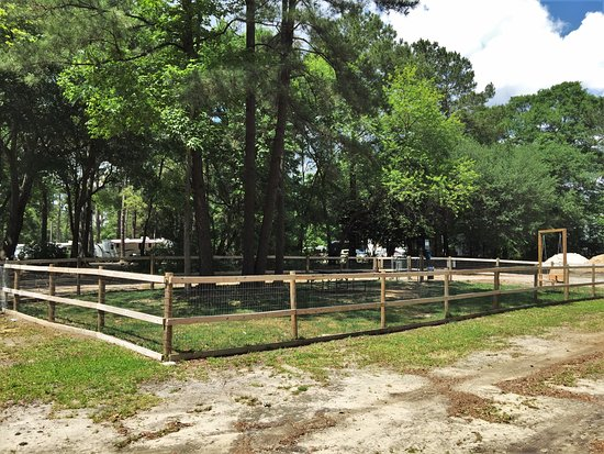 Ladson, Güney Carolina: Let your pets run free in our dog park.