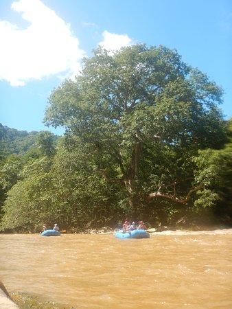 Ola Verde Expediciones : INCREDIBLE nature experience!