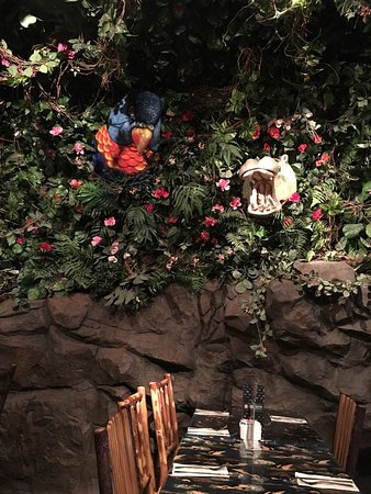 Rainforest Cafe : What a great place