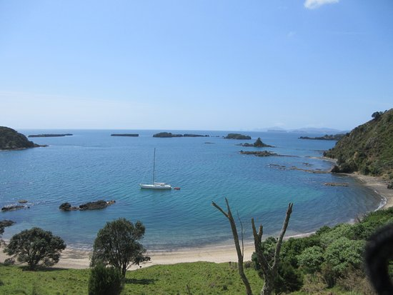 Bay of Islands Sailing/Gungha II: View