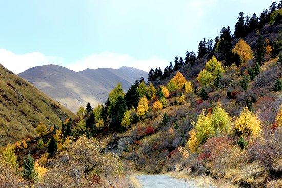 Heishui County, China: autumn foliage on mountains of Sichuan Heishui