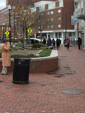 Harvard Square Hotel: photo0.jpg