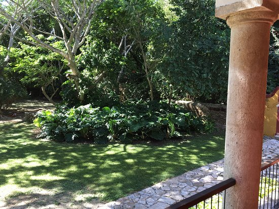 Hacienda San Jose, a Luxury Collection Hotel: photo0.jpg