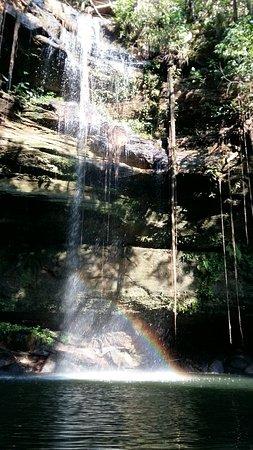 Ecologica Falls
