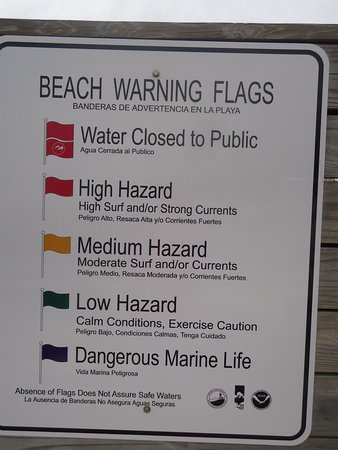 Warning Flags - Picture of Henderson Beach State Park