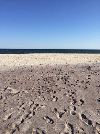 Fire Island, NY: photo4.jpg