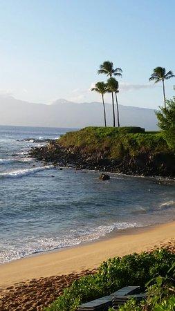 Coastal Nature Trail: 20161109_170646_large.jpg