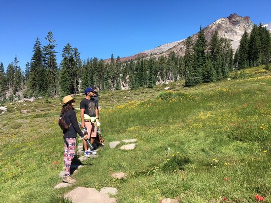 Weed, CA: Energy healing and hike through Panther Meadows at Mount Shasta with Shaman Alan Waugh