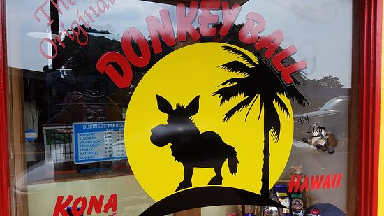 The Original Donkey Ball Store