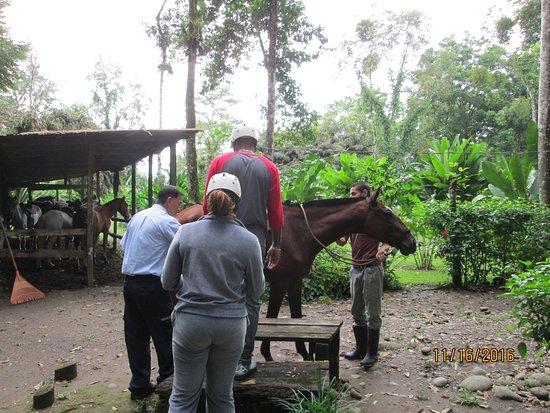 Provincia de Heredia, Costa Rica: Saddling up for hour tour through rain forest