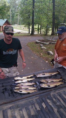Cherokee National Forest: Fishing for the fish was great ...