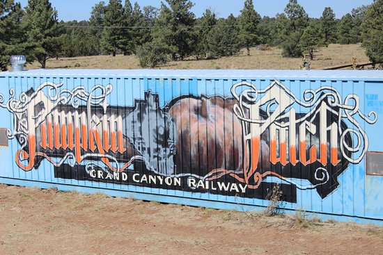 Williams, AZ: What you see when you first start to pull up to the patch