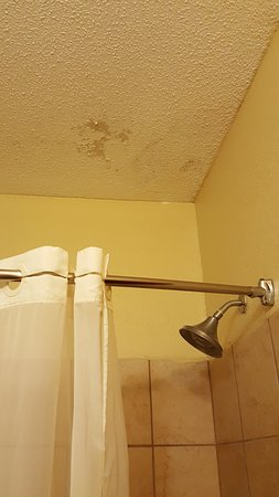 La Grange, KY: pealing ceiling