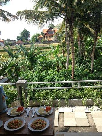 Blu Mango Guesthouse - UPDATED 2018 Prices & Guest house Reviews (Ubud, Bali)  - TripAdvisor