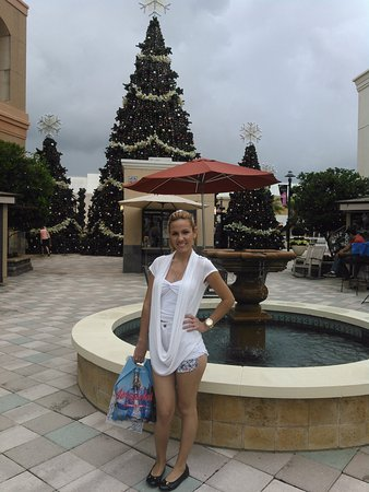 Wesley Chapel, FL: fountain and Christmas tree