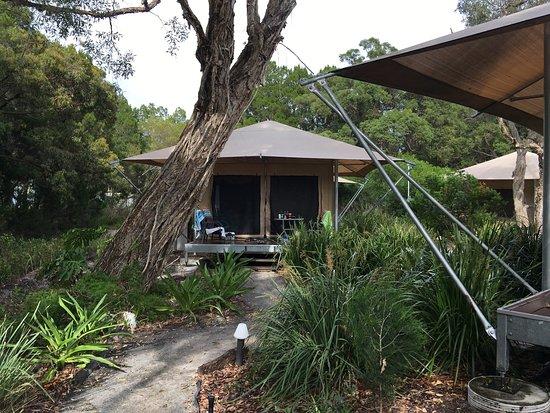 Bulwer, Australia: photo0.jpg