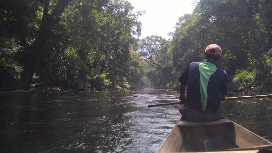 写真タマンネガラ国立公園枚