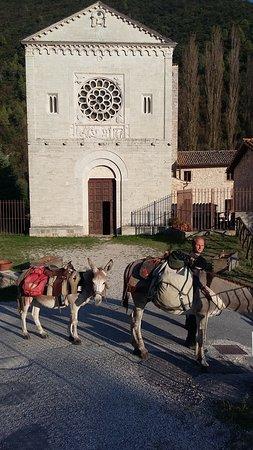 Sant'Anatolia di Narco, Italia: L'abazia