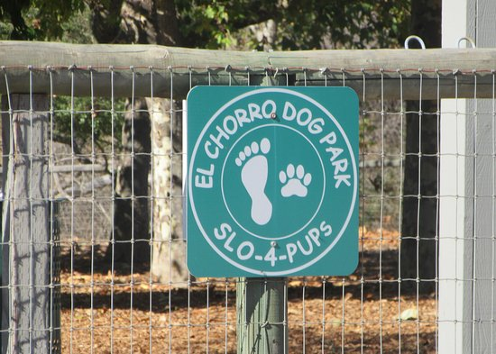 El Chorro Regional Park: El Chorro Dog Park, El Charro Regional Park, San Luis Obispo, CA