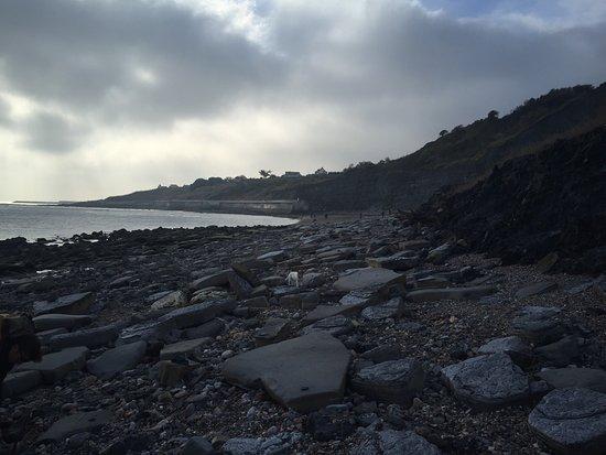 Lyme Regis, UK: photo8.jpg