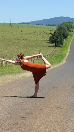 Gallo DairyLand : yoga is always a good pose at the farm the cows just mooed