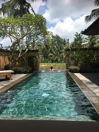 The Chedi Club Tanah Gajah, Ubud, Bali – a GHM hotel: photo0.jpg