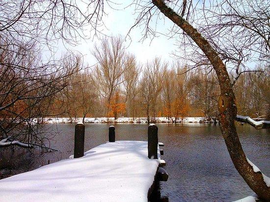 Alojamientos Rurales Valle de El Paular: Bosque y lago Finlandés en invierno