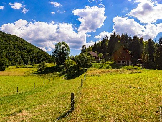 Croatie : Risnjak mountain
