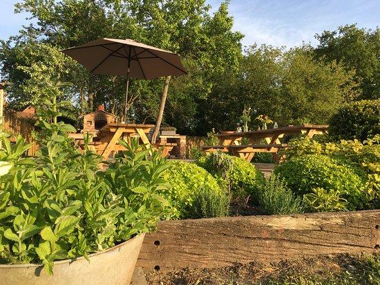 Pluckley, UK: Terrace & Herb Garden
