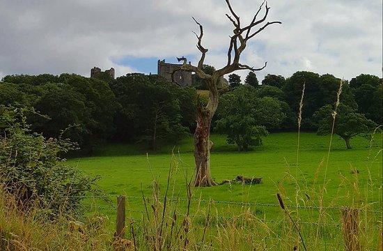 Laugharne Castle: 20160727_162009_large.jpg