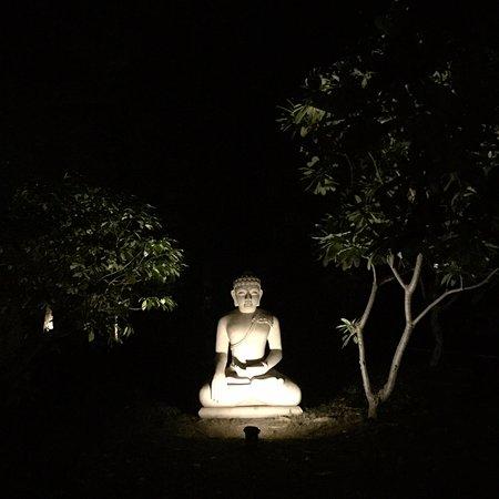 Sohna, Índia: Buddha lawn near our villa