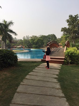 Sohna, Indien: The pool