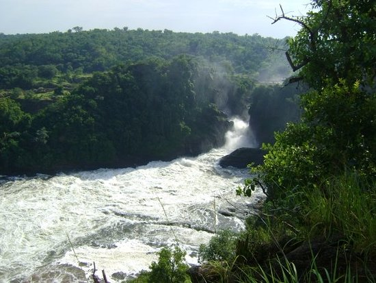 Murchison Falls National Park照片