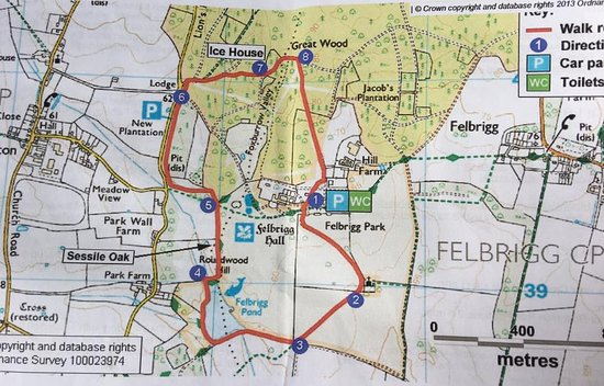The circular walk route map - Picture of Felbrigg Hall, Norwich ...
