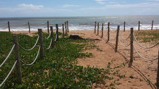 Praia de Manguinhos: 20161109_100201_large.jpg