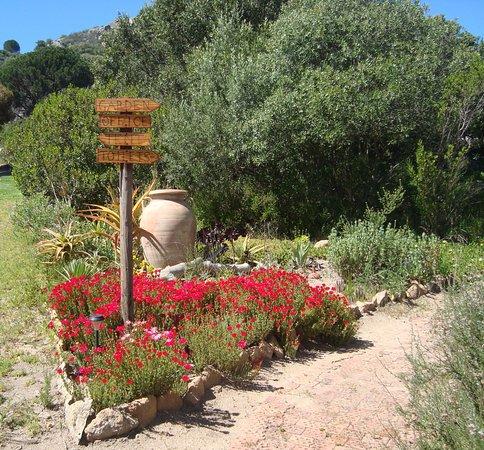 Salem Biblical Garden